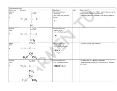 bch210-2014-20-amino-acids-pdf