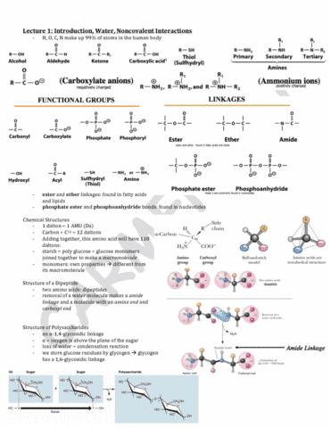 bch210-2014-midterm-notes-pdf