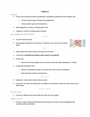 chapter-17-hsci-100-notes