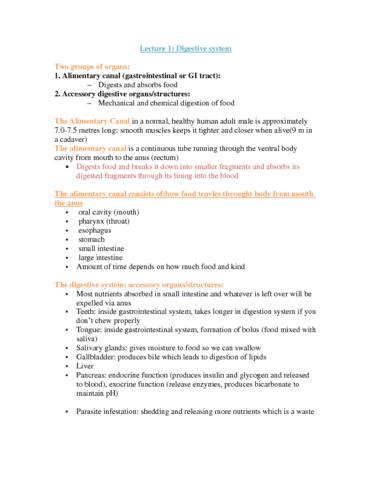 study-digestive-system-docx