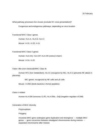 mhc-tissue-transplant-rejection-nominal-antigens-superantigens