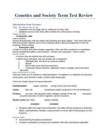 genetics-exam-review-docx