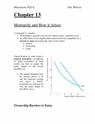 miceco-chapter-13-docx
