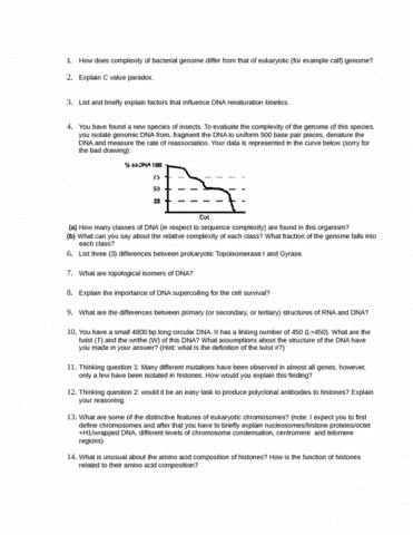 study-questions-set-2-docx