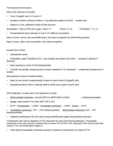 microbio-kobryn-notes-docx
