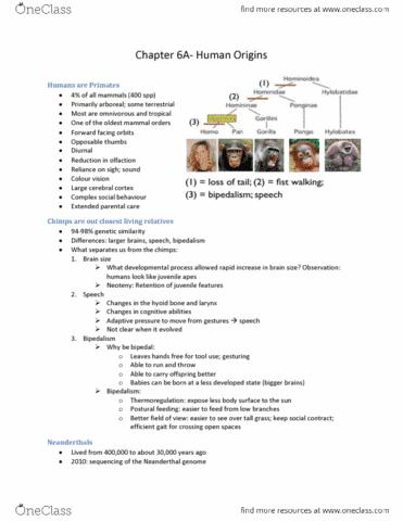 chpater6-pdf