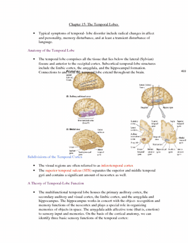 psyb65-chapter15-16-notes-doc