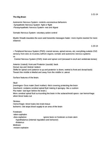 psychology-notes-umass-scored-92-