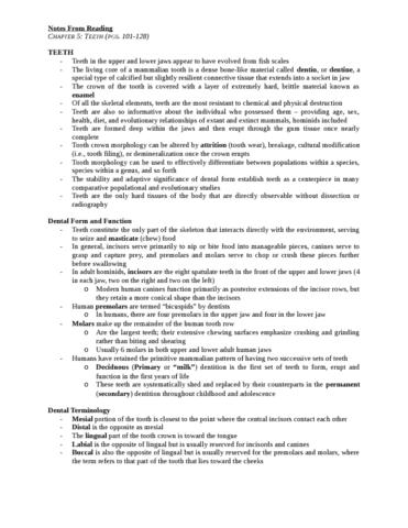 chapter-5-teeth-pgs-101-128-