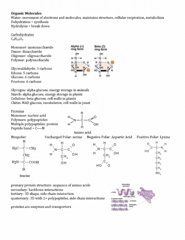 biology-107-dr-harrington-entire-course-final-exam-material-pdf