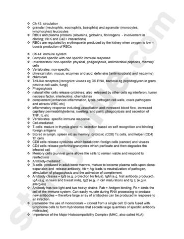 Macro summary notes