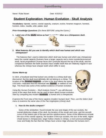 humanevolutionse-doc