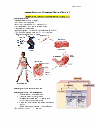 health-sciences-2300a-b-chapter-1-8-anatomy-definitions-midterm-1-review-study-guide-doc