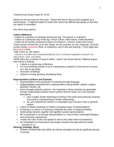 csct-1cs3-final-cultural-studies-exam-review