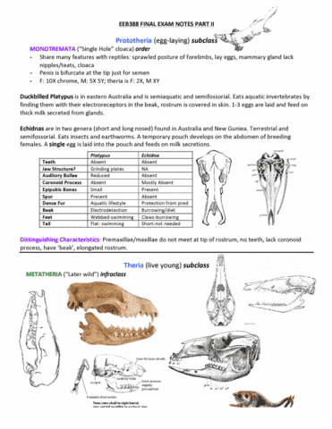 eeb388h1-final-eeb388-final-exam-notes-part-ii