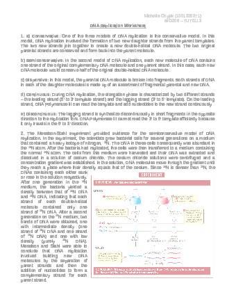bio206h5-final-dna-replication-worksheet-answers