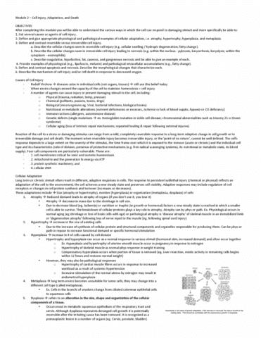pathology-2420a-lecture-2-pathology-2420a-lecture-2
