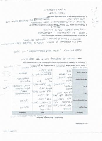 bio-sci-98-midterm-bio-98-midterm-3-study-guide
