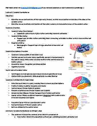 anatomy-and-cell-biology-3319-lecture-5-cerebral-hemispheres