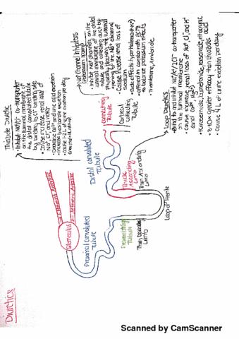 bps-334-lecture-1-diuretics-1