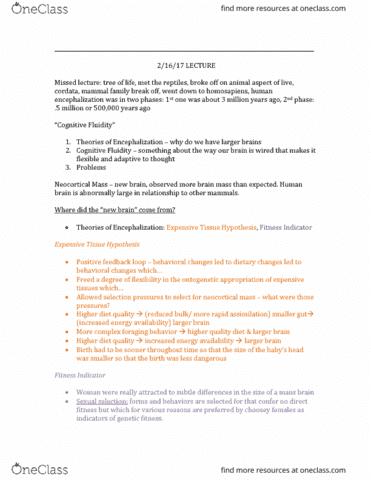 hist103-lecture-4-cognitive-fluidity-2-16