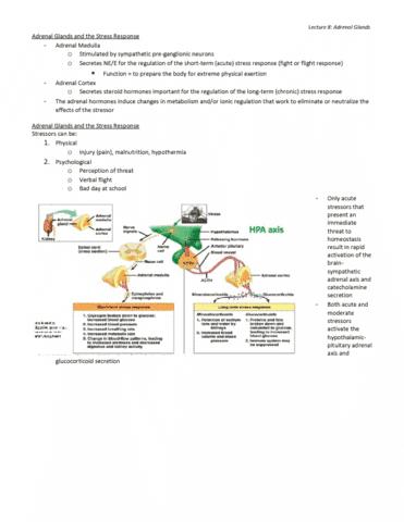 bi459-lecture-8-bi459-exam-review-lecture-8