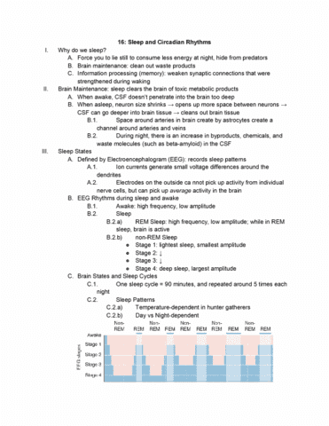 01:146:295 Lecture Notes - Lecture 16: Circadian Rhythm, Lower Motor  Neuron, Sleep Paralysis