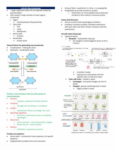 biol-130-lecture-13-unit-2b