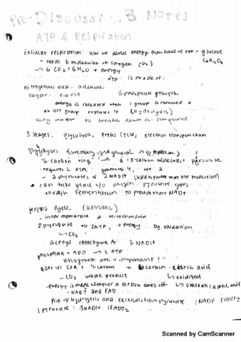 bis-2a-lecture-3-pre-discussion-3-notes-atp-respiration-and-photosynthesis