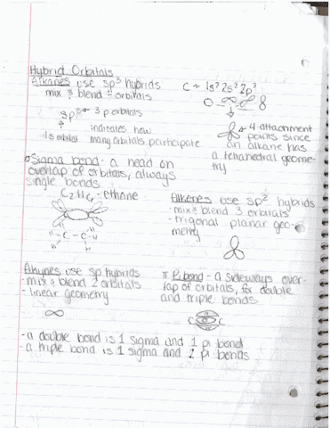 chm-124-lecture-5-hybrid-orbitals-of-alkanes-alkenes-and-alkynes-sigma-and-pi-bonds