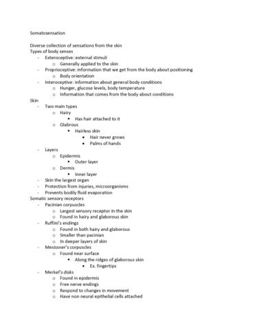 psyo-2470-lecture-5-somatosensation