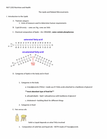 nut-2202-lecture-16-outline-6-the-lipids-and-related-micronutrients