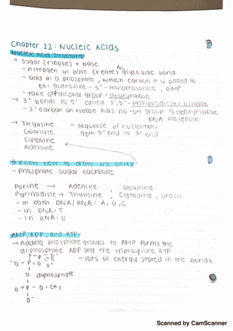 chem-221-lecture-11-chapter-22-lecture-11-notes