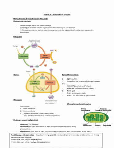 bi110-lecture-20-biology-note-20-module-28-