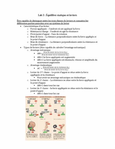 apa2714-final-e-quilibre-statique-et-leviers-lab-3