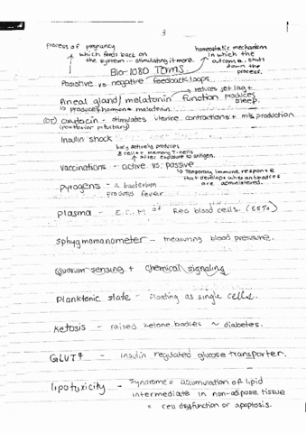 biol-1080-lecture-16-bio-1080-lecture-notes