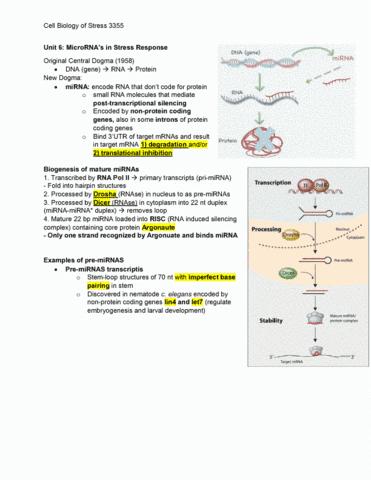 biology-3355a-b-final-final-notes-3355-unit-6-unit-10