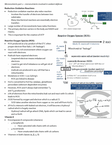 nutr-3210-lecture-11-micronutrients-part-2