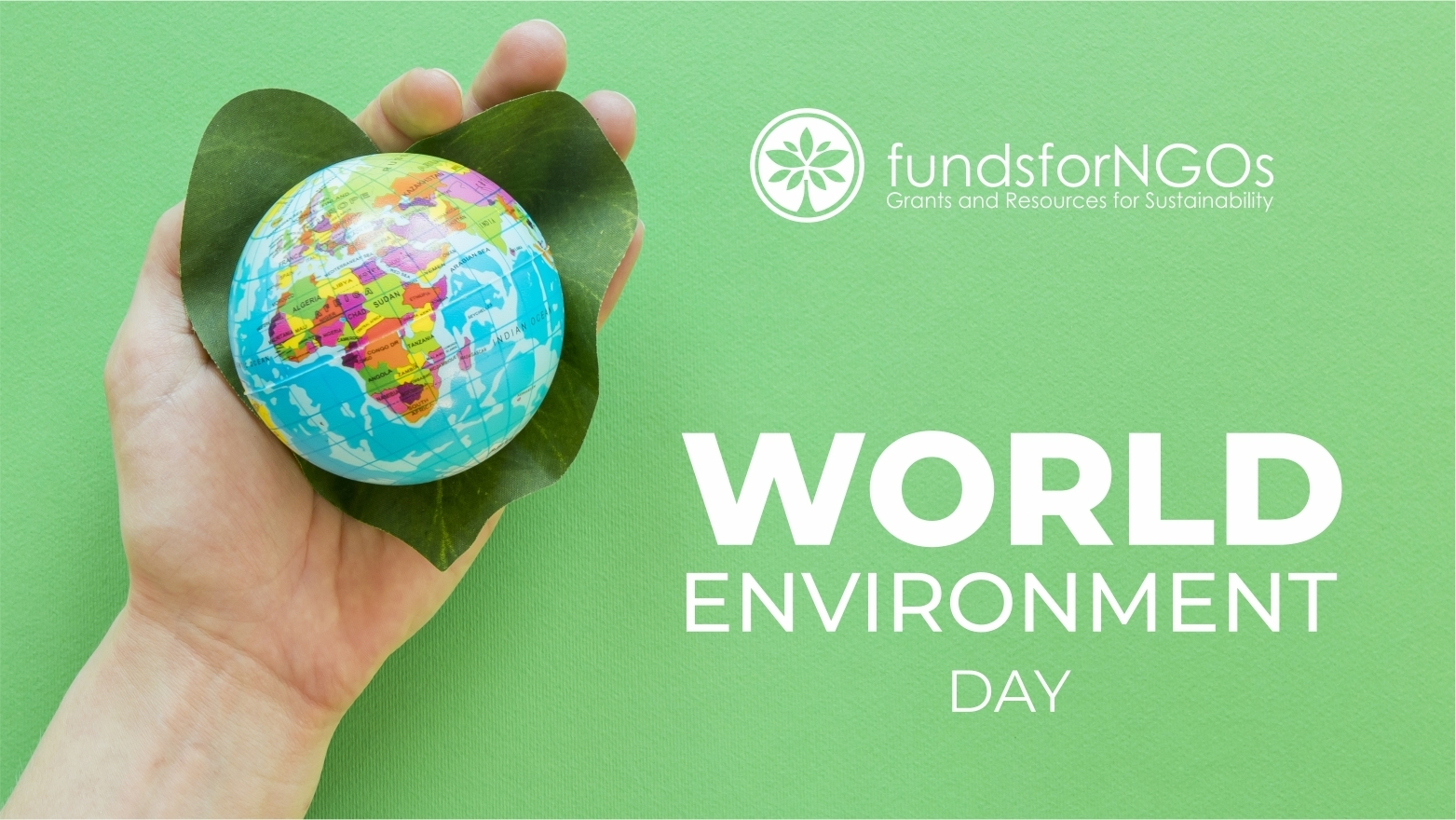World Environment Day: Open Grants for NGOs to protect Biodiversity and Nature