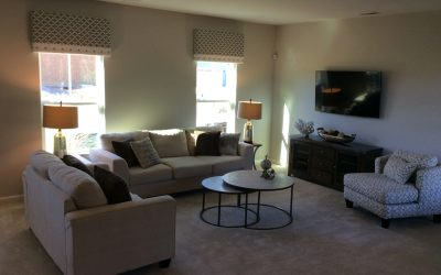 SOLD OUT! Model Home Contents Sale in Williamsburg! 2 Days Only!
