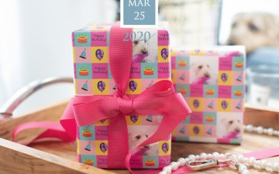 the gift is in the wrap – fun gift wrap product review