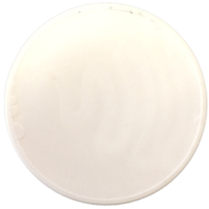 Token Chip, White