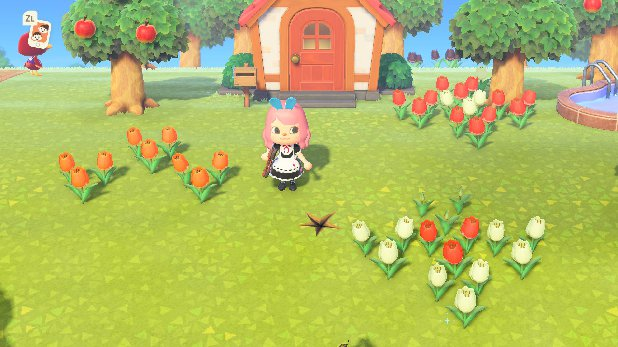Animal Crossing New Horizons Flower Breeding Guide Tips Prima