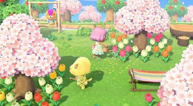 Animal Crossing New Horizons Flower Types Master Guide Tips