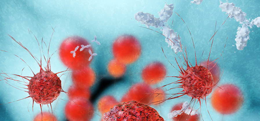 Cancer-immunotherapy