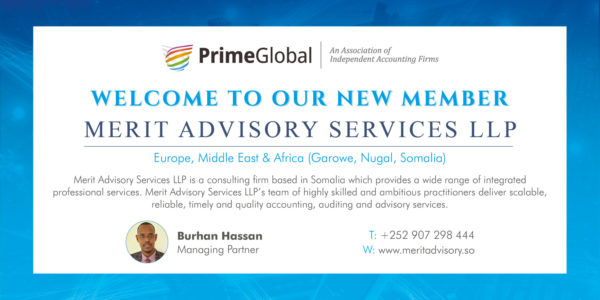 Merit Advisory Services Llp 01 20