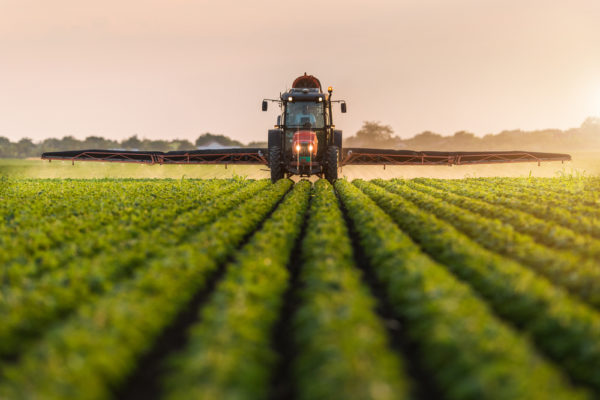 Coronavirus and the Agricultural Sector