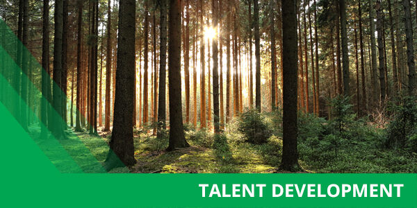 Talent Trees Insights 600X300 06 20