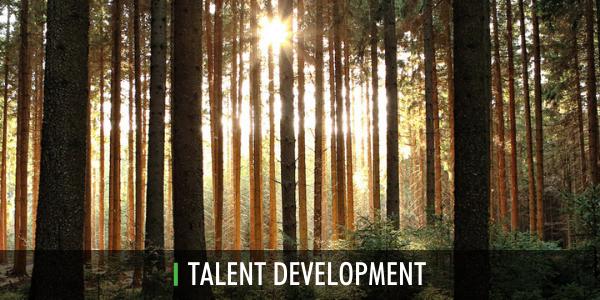Talent Development Promo