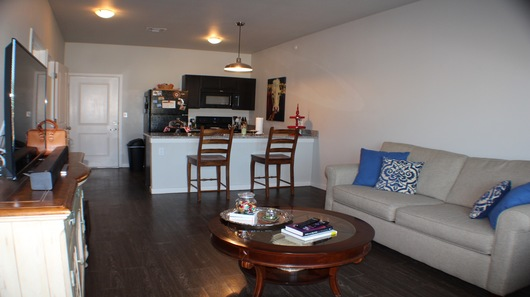Standard living room 2016